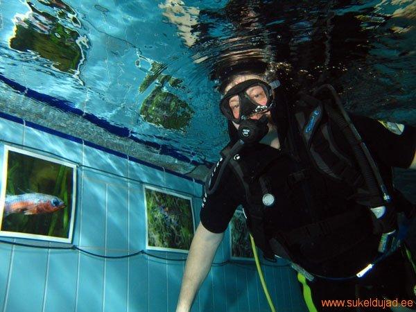 sukeldumine-ilmad-vees-rakvere19