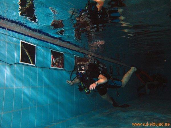 sukeldumine-silmad-vees-rakvere7